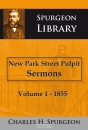 Productafbeelding New park street pulput sermons vol 1